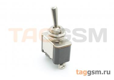 KN3(A)-101 Тумблер на панель с клеммными зажимами под винт ON-OFF SPST 250В 10А (12мм)