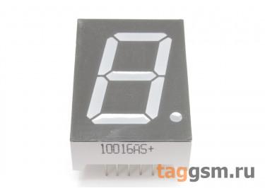 10016AS (Красный) Цифровой индикатор 1