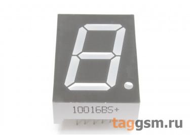10016BS (Красный) Цифровой индикатор 1