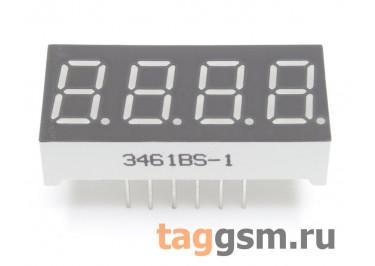 3461BS (Красный) Цифровой индикатор 0,36