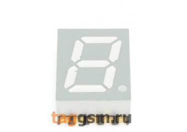 3911CG-G (Зелёный) Цифровой индикатор SMD 0,39