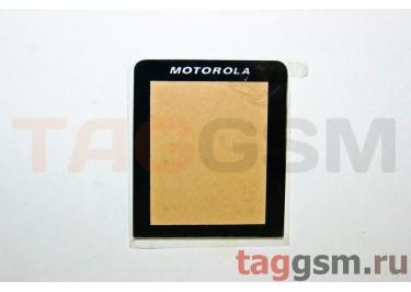 Стекло корпуса для Motorola L6 class AAA