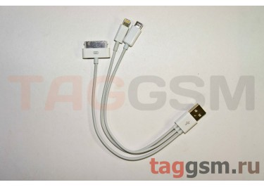 USB 4 в 1 для iPhone 5 / 4 / 3Gs / iPad / Micro USB / GalaxyTab (20см) (техпак)