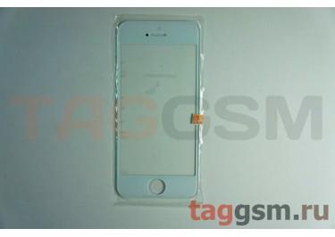 Стекло для iPhone 5 / 5C / 5S (белый)