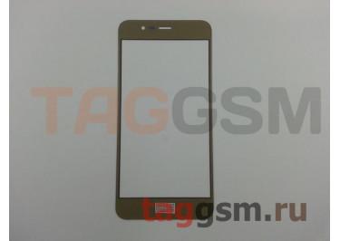 Стекло для Asus Zenfone 3 Max (ZC520TL) (золото)