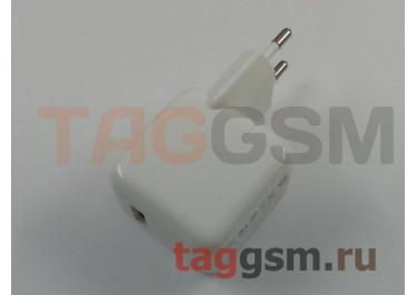 СЗУ для iPad 2100mA белый TG