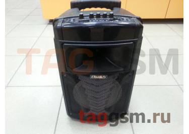Колонка (MR-213A) (USB+MicroSD+FM+подстветка+микрофон+пульт) (черная)