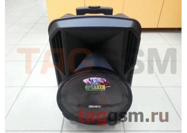Колонка (MR-901ch) (USB+MicroSD+FM+LED+подстветка+микрофон+пульт) (черная)