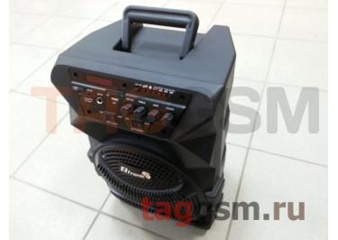 Колонка (EL8-12) (Bluetooth+USB+SD+FM+AUX+TWS+AUX+REC+LED+пульт) (черная) Eltronic