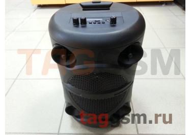 Колонка (ZQS-8113) (Bluetooth+USB+MicroSD+FM+AUX+MIC+дисплей+пульт) (черная)
