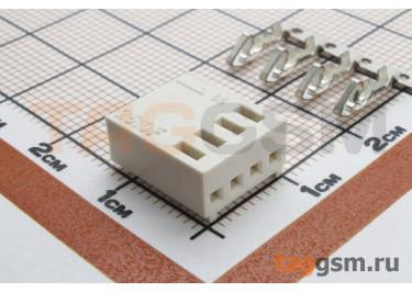 DS1070 series (I-DS1070-SCV04) Гнездо на кабель 4 конт. шаг 2,54мм 250В 3А