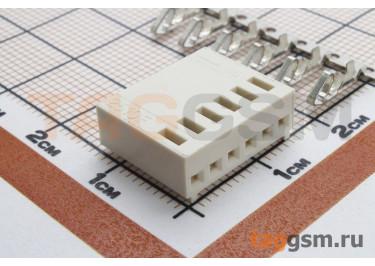 DS1070 series (I-DS1070-SCV06) Гнездо на кабель 6 конт. шаг 2,54мм 250В 3А