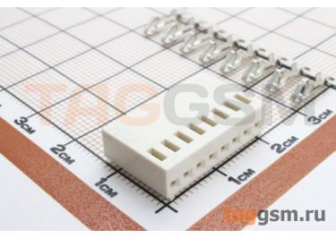 DS1070 series (I-DS1070-SCV08) Гнездо на кабель 8 конт. шаг 2,54мм 250В 3А