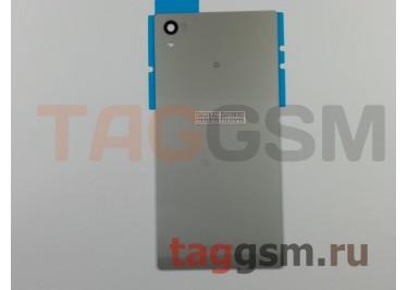 Задняя крышка для Sony Xperia Z5 (E6653 / E6683) (серебро)