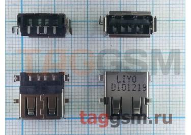 Разъем USB для Lenovo G430 / G530