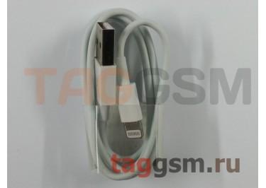USB для iPhone 6 / iPhone 5 / iPad4 / iPad Mini / iPod Nano (техпак) белый