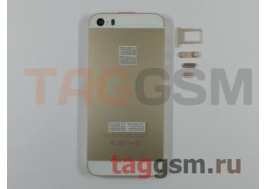 Задняя крышка для iPhone 5S (золото) A