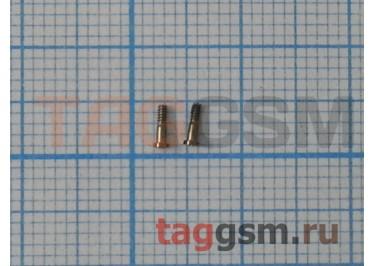 Винты для iPhone 5S нижние (2шт) (золото)