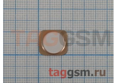 """Кнопка (толкатель) """"Home"""" для iPhone 5 (белый-золото) (дизайн iPhone 5S)"""