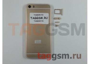 Задняя крышка для iPhone 5S (золото) (дизайн iPhone 6)