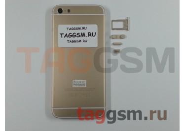 Задняя крышка для iPhone 5 (золото) (дизайн iPhone 6)