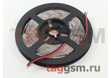 Светодиодная лента SMD2835 60 диодов на 5м. IP20 4.8 Вт 12V 5 метров Smartbuy