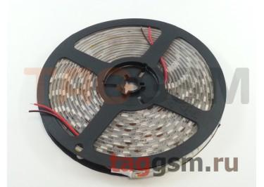 Светодиодная лента SMD5050 60 диодов на 5м. IP65 14.4 Вт 12V 5 метров Smartbuy