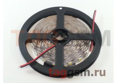 Светодиодная лента SMD5050 60 диодов на 5м. IP20 14.4 Вт 12V 5 метров Smartbuy