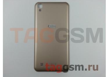 Задняя крышка для LG K220DS X Power (золото), ориг